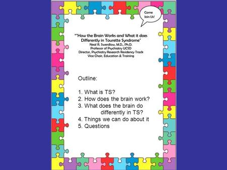 Outline: 1. What is TS? 2. How does the brain work? 3. What does the brain do differently in TS? 4. Things we can do about it 5. Questions.