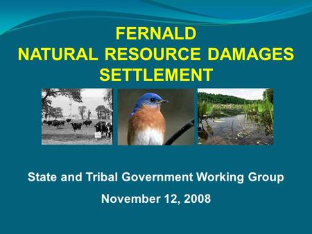 State and Tribal Government Working Group November 12, 2008 FERNALD NATURAL RESOURCE DAMAGES SETTLEMENT.