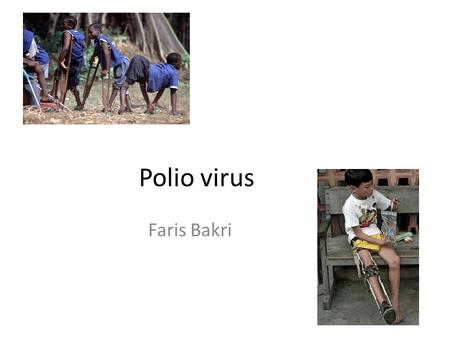 Polio virus Faris Bakri. Introduction The cause of poliomyelitis Polios: gray Myelos: marrow or spinal cord Global eradication is anticipated in 21 st.