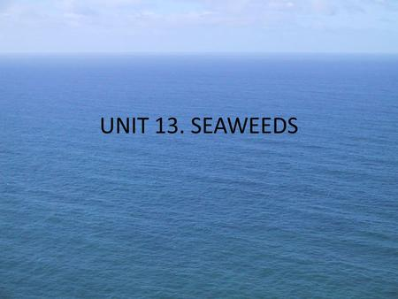 UNIT 13. SEAWEEDS. Shallow coastal water Rocky shore areas Green Brown red Blue green algae Food Fodder Manure Medicine Cosmetics 1) Availability of Seaweed: