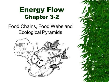 Energy Flow Chapter 3-2 Food Chains, Food Webs and Ecological Pyramids.