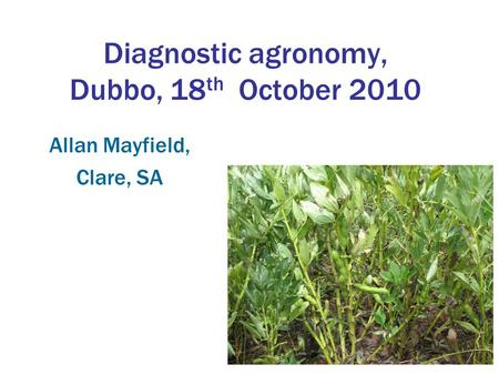 Diagnostic agronomy, Dubbo, 18 th October 2010 Allan Mayfield, Clare, SA.