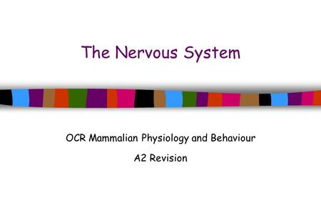 The Nervous System OCR Mammalian Physiology and Behaviour A2 Revision.