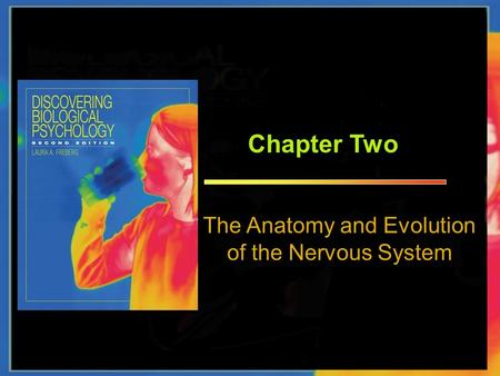 Chapter Two The Anatomy and Evolution of the Nervous System.