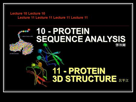 Lecture 10 Lecture 10 Lecture 11 Lecture 11 Lecture 11 Lecture 11 - PROTEIN 10 - PROTEIN SEQUENCE ANALYSIS - PROTEIN 11 - PROTEIN 3D STRUCTURE 鄧致剛 呂平江.