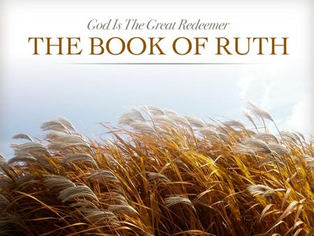Ruth. A Great Book Ch. 1 - Introduction: Naomi's Loss Ch. 1 - Naomi & Ruth Seek God's People Ch. 2 - Ruth Meets Boaz in the Fields Ch. 3 - Ruth Goes to.