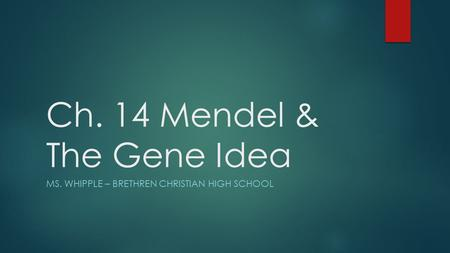 Ch. 14 Mendel & The <strong>Gene</strong> Idea MS. WHIPPLE – BRETHREN CHRISTIAN HIGH <strong>SCHOOL</strong>.