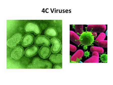4C Viruses. NONLIVING Contain either DNA or RNA (but NEVER Both) VIRUS.