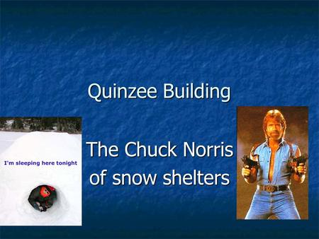 The Chuck Norris of snow shelters