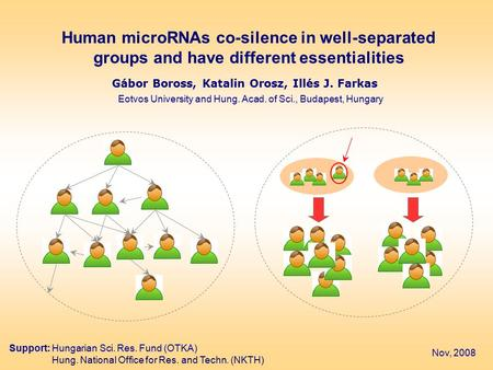 Human microRNAs co-silence in well-separated groups and have different essentialities Gábor Boross, Katalin Orosz, Illés J. Farkas Eotvos University and.