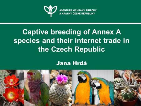 Captive breeding of Annex A species and their internet trade in the Czech Republic Jana Hrdá.
