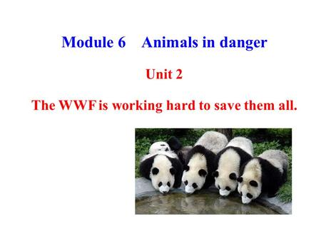 Module 6 Animals in danger Unit 2 The WWF is working hard to save them all.