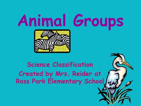 Animal Groups Science Classification Created by Mrs. Reider at Ross Park Elementary School.