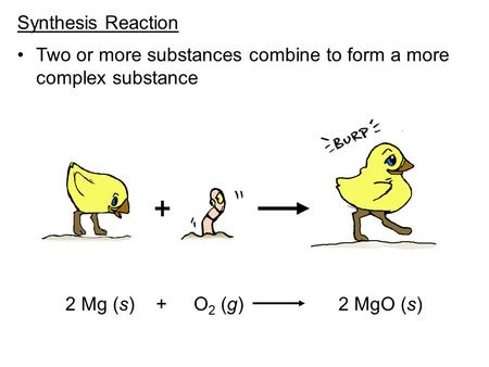 Synthesis Reaction Two or more substances combine to form a more complex substance 2 Mg (s) + O 2 (g) 2 MgO (s)