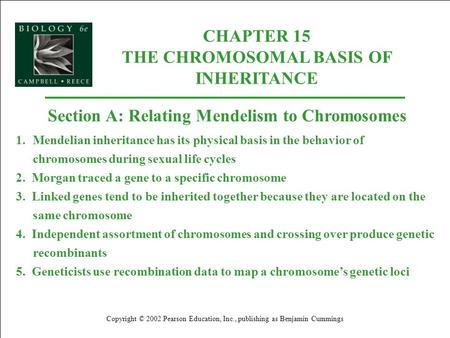 CHAPTER 15 THE CHROMOSOMAL BASIS OF INHERITANCE Copyright © 2002 Pearson Education, Inc., publishing as Benjamin Cummings Section A: Relating Mendelism.