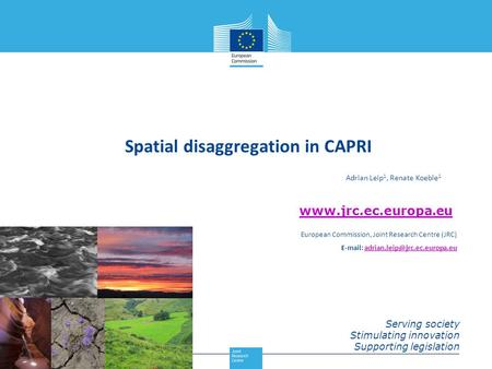 Spatial disaggregation in CAPRI