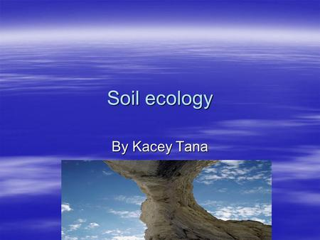 Soil ecology By Kacey Tana. Rock layers  Ground layer: plants grow and animals live here. A thick cover of plants can keep the soil cool and from dying.