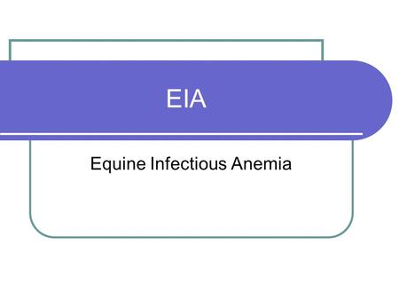 EIA Equine Infectious Anemia. What is EIA? Equine infectious anemia (EIA) is a disease, caused by a virus that causes anemia, intermittent fever, and.