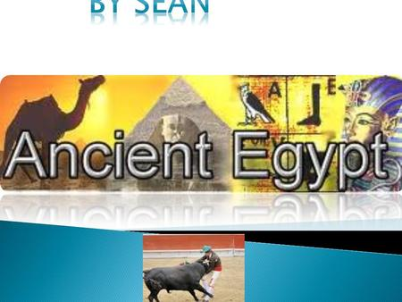 By seán moran.  I am doing a PowerPoint on ancient Egypt  I hope you all like it.