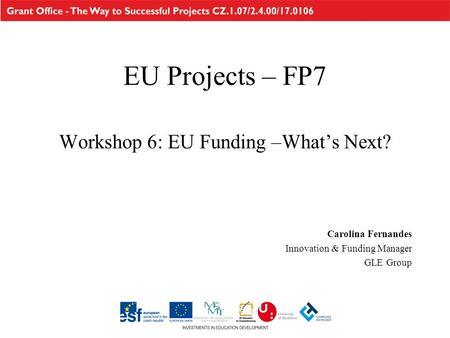 EU Projects – FP7 Workshop 6: EU Funding –What's Next? Carolina Fernandes Innovation & Funding Manager GLE Group.