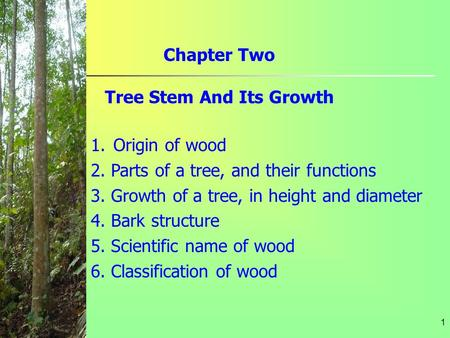 1 Chapter Two Tree Stem And Its Growth 1.Origin of wood 2. Parts of a tree, and their functions 3. Growth of a tree, in height and diameter 4. Bark structure.