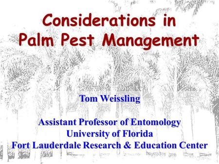 Considerations in Palm Pest Management Tom Weissling Assistant Professor of Entomology University of Florida Fort Lauderdale Research & Education Center.