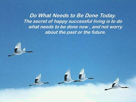 Do What Needs to Be Done Today. The secret of happy successful living is to do what needs to be done now, and not worry about the past or the future.