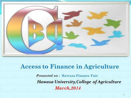 Access to Finance in Agriculture Presented on : Hawasa Finance Fair Hawasa University,College of Agriculture March,2014 1.