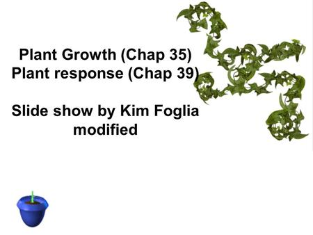 Plant Growth (Chap 35) Plant response (Chap 39) Slide show by Kim Foglia modified.