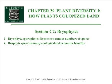 CHAPTER 29 PLANT DIVERSITY I: HOW PLANTS COLONIZED LAND Copyright © 2002 Pearson Education, Inc., publishing as Benjamin Cummings Section C2: Bryophytes.