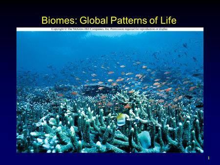 1 Biomes: Global Patterns of Life. 2 Outline Terrestrial Biomes Marine Ecosystems  Open Ocean  Shallow Coasts Freshwater Ecosystems  Lakes  Wetlands.