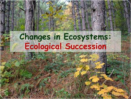 Changes in Ecosystems: Ecological Succession. What is Ecological Succession? Natural, gradual changes in the types of species that live in an area Can.