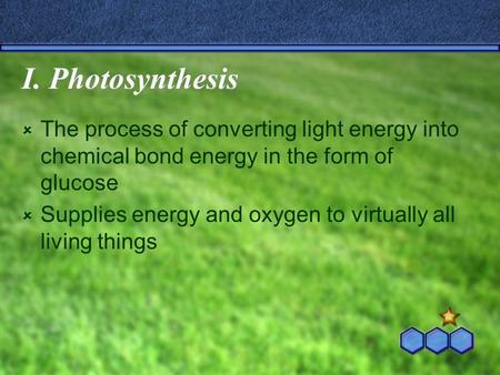 I. Photosynthesis  The process of converting light energy into chemical bond energy in the form of glucose  Supplies energy and oxygen to virtually all.