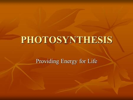 PHOTOSYNTHESIS Providing Energy for Life. Do you remember food web terminology? Autotrophs = producers Autotrophs = producers Photoautotrophs Photoautotrophs.