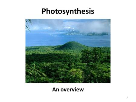 Photosynthesis An overview 1. Objectives SWBAT describe the process of photosynthesis SWBAT relate producers to photosynthesis 2.