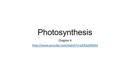 Photosynthesis Chapter 4