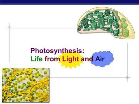 Photosynthesis: Life from Light and Air Energy needs of life  All life needs a constant input of energy  Heterotrophs (Animals)  get their energy.