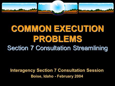 COMMON EXECUTION PROBLEMS Section 7 Consultation Streamlining Interagency Section 7 Consultation Session Boise, Idaho - February 2004.