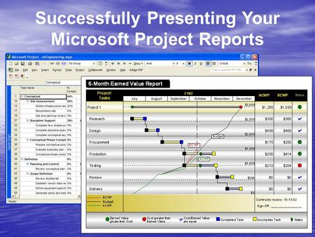 Successfully Presenting Your Microsoft Project Reports