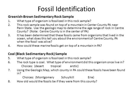 Fossil Identification