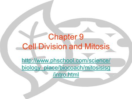 Chapter 9 Cell Division and Mitosis  biology_place/biocoach/mitosisisg /intro.html.