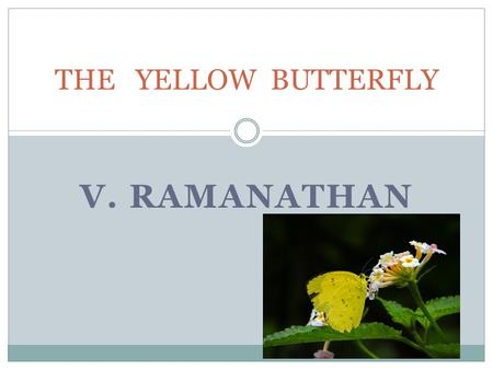 V. RAMANATHAN THE YELLOW BUTTERFLY READING COMPREHENSION IT IS AN INTERESTING STORY WRITTEN BY NILLIMA SINHA. THE STORY TELLS US HOW THE CHILD SONU CHASED.