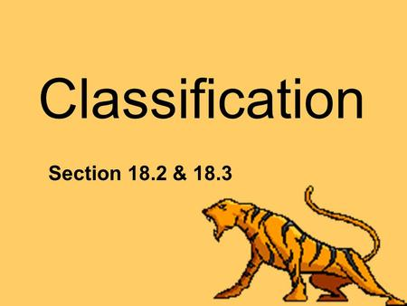 Classification Section 18.2 & 18.3. Phylogeny: Evolutionary relationships among organisms Biologists group organisms into categories that represent lines.