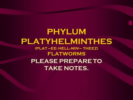 PHYLUM PLATYHELMINTHES (PLAT –EE- HELL-MIN – THEEZ) FLATWORMS