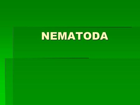 "NEMATODA. Characteristics  Roundworms  Name means ""thread- like""  Thought to be most abundant animals on Earth (only about 20,000 species identified,"