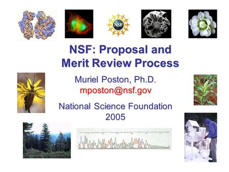 NSF: Proposal and Merit Review Process Muriel Poston, Ph.D. National Science Foundation 2005.