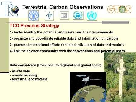 Terrestrial Carbon Observations TCO Previous Strategy 1- better identify the potential end users, and their requirements 2- organize and coordinate reliable.
