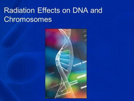 Radiation Effects on DNA and Chromosomes. So, what do you understand by DNA anyway? DNA can be described as a long fiber that resembles a hair under a.