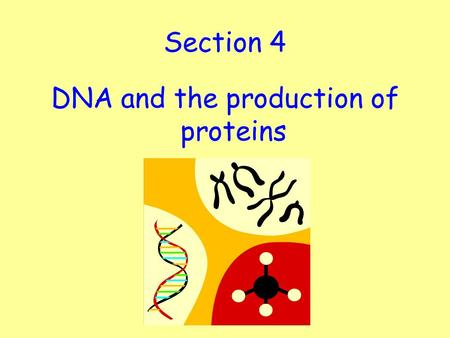 Section 4 DNA and the production of proteins. Learning Intention: To understand the structure and function of DNA, genes and chromosomes. Success Criteria: