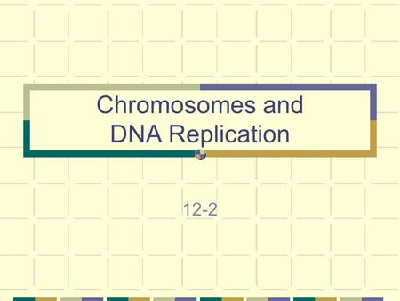 Chromosomes and DNA Replication 12-2. DNA & Chromosomes Prokaryotes - Lack nuclei and cellular organelles Have single circular DNA molecule Contains nearly.